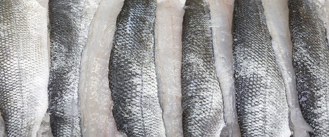 Fish as food product