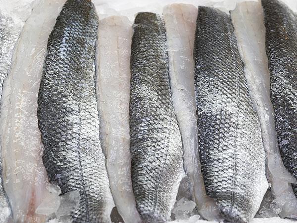 Fisch als Nahrungsmittel
